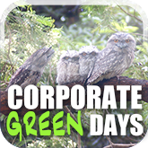 Corporate Green Days
